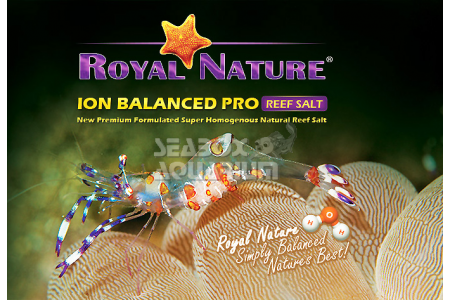 Royal Nature Sale Marino Bilanciato Pro - Reef Salt