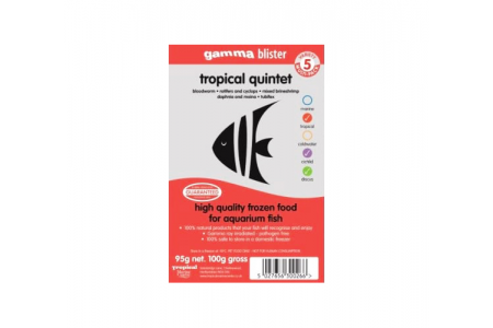 TMC Tropical Quintet