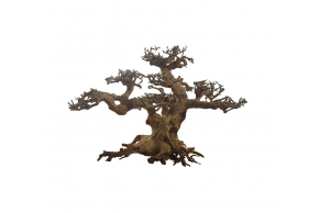 ADA Bonsai Wood S