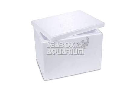 BOX Small - Polistirolo
