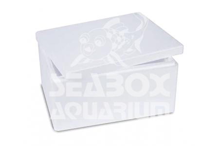 BOX Large - Polistirolo