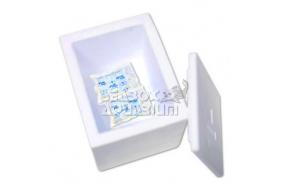 BOX Congelato